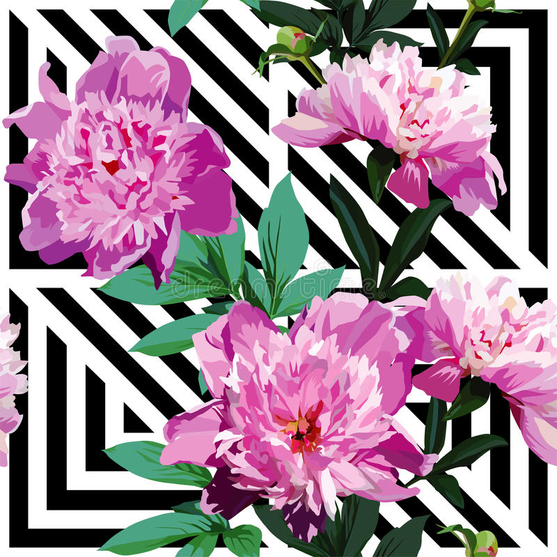 Teste padrão floral da peônia cor-de-rosa, fundo preto e branco geométrico ilustração stock