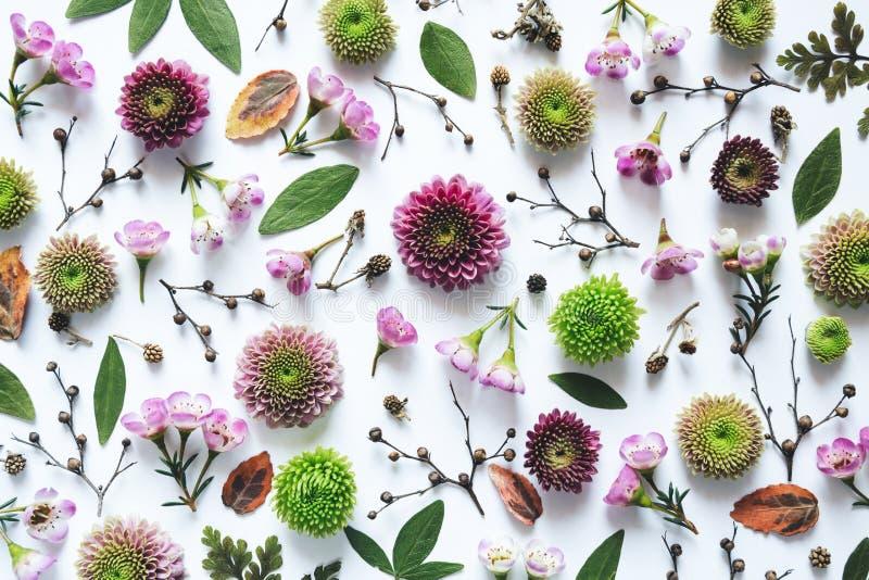 Teste padrão floral do quadro completo fotografia de stock