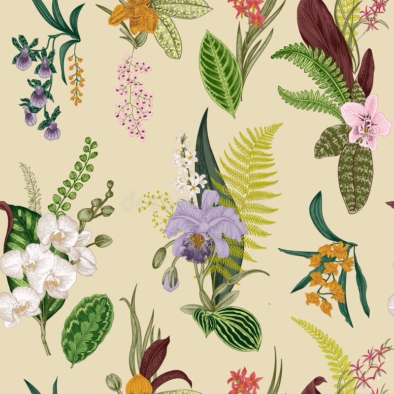 Teste padrão floral do vintage sem emenda do vetor ilustração royalty free