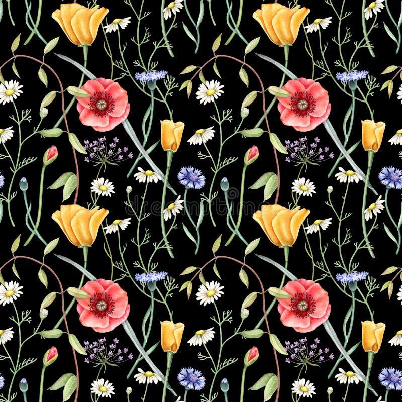 Teste padrão floral sem emenda com os wildflowers no fundo escuro Ilustração tirada mão da aguarela ilustração do vetor