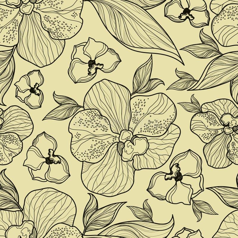 Teste padrão floral sem emenda da orquídea ilustração stock