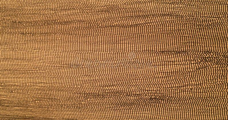 Teste padrão floral sem emenda do damasco Papel de parede real O papel de fundo do ouro, textura é vintage velho cor afligida do  fotografia de stock