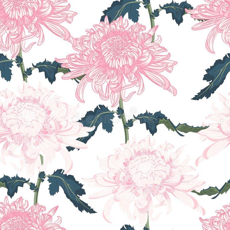 Teste padrão floral sem emenda do vetor Crisântemo nacional japonês da flor ilustração royalty free