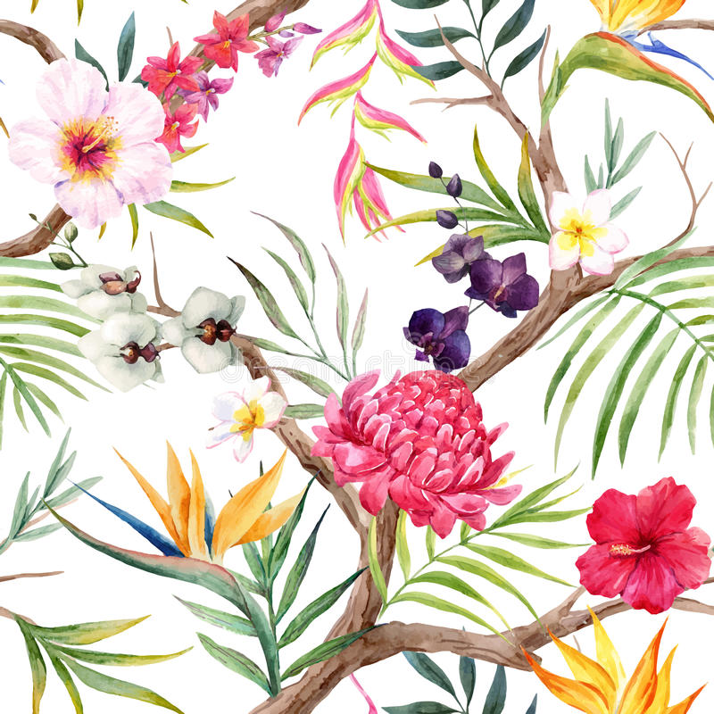 Teste padrão floral tropical do vetor da aquarela ilustração stock