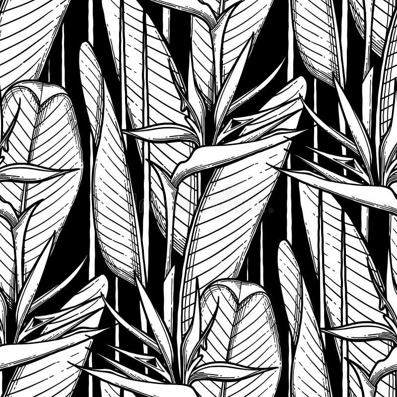 Teste padrão gráfico do strelitzia ilustração royalty free