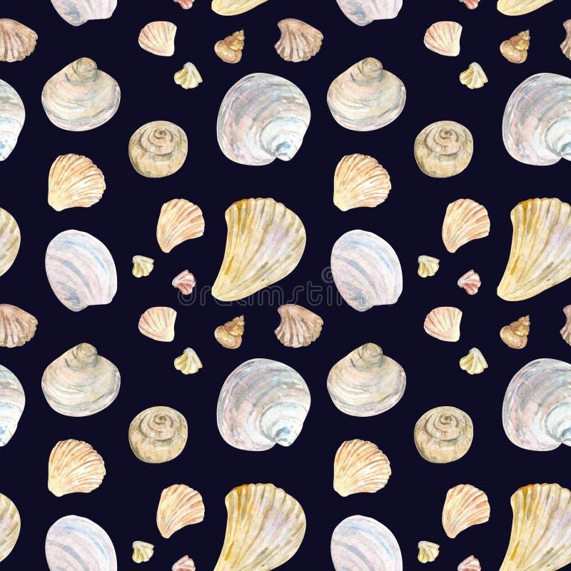 Teste padrão natural da concha do mar da cor da aquarela no preto ilustração royalty free