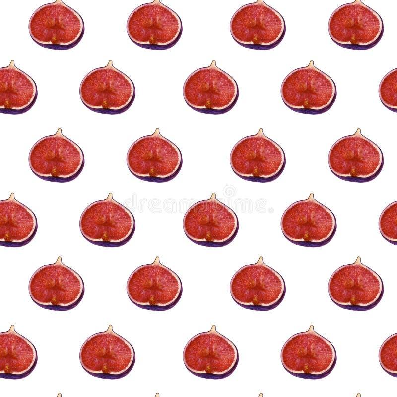 Teste padrão natural do figo do Watercolour imagem de stock royalty free