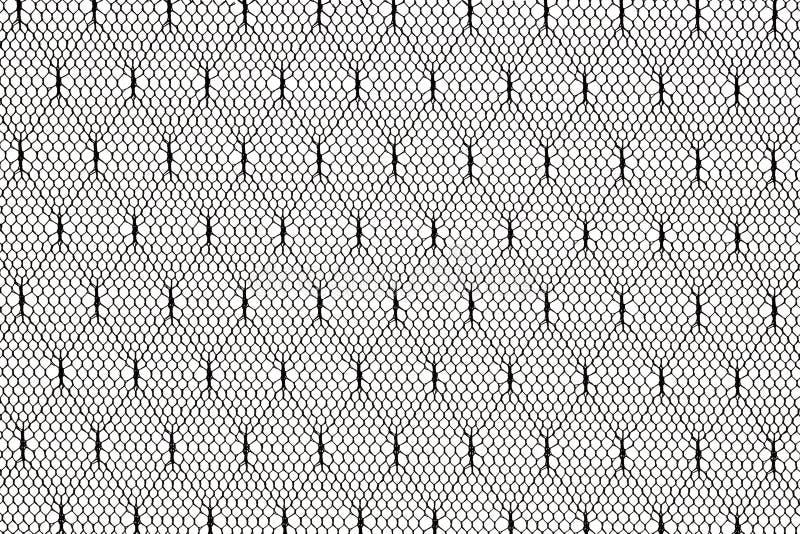 Teste padrão preto da tela do laço imagens de stock royalty free
