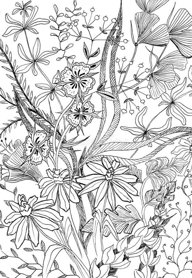 Teste padrão preto e branco gráfico do fundo da flor fotos de stock