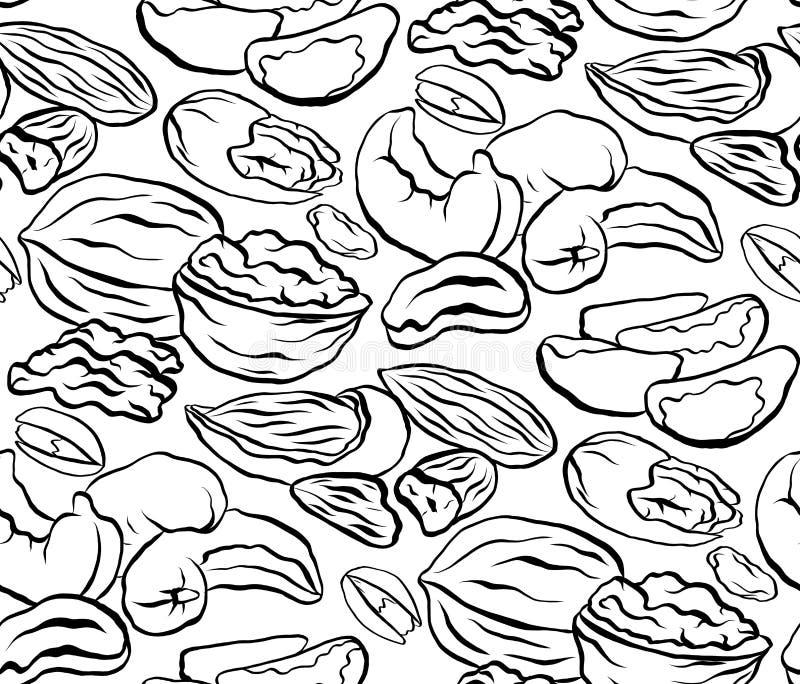 Teste padrão preto e branco sem emenda com teste padrão do contorno de tipos diferentes de porcas Textura do vetor ilustração royalty free
