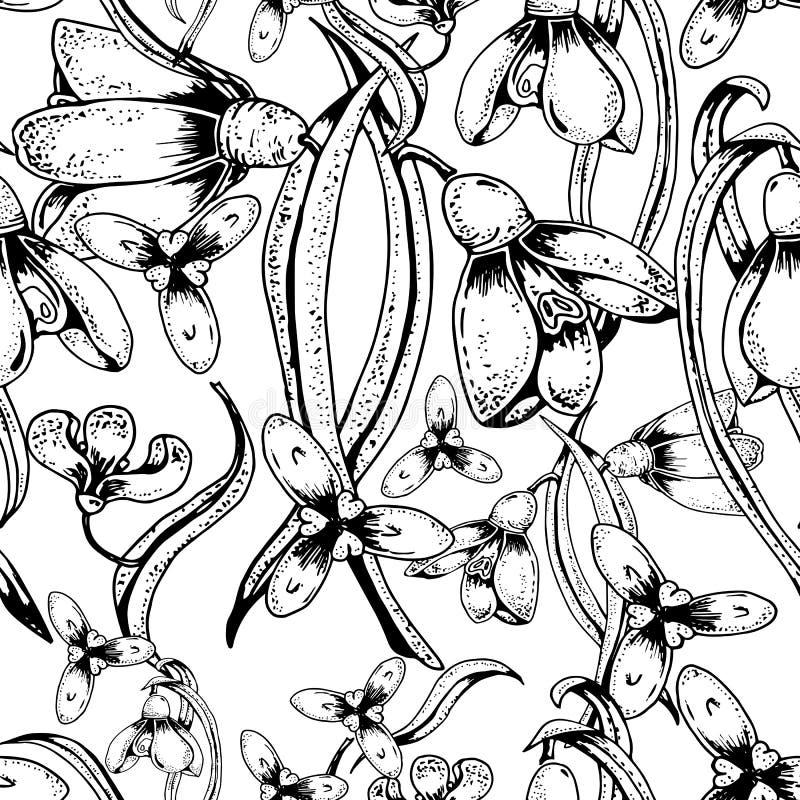 Teste padrão sem emenda bonito com snowdrops das flores Vetor desenhado mão ilustração do vetor