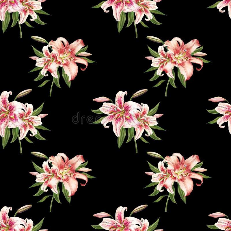 Teste padrão sem emenda bonito do lírio do branco e do rosa Ramalhete das flores C?pia floral Desenho do marcador ilustração royalty free