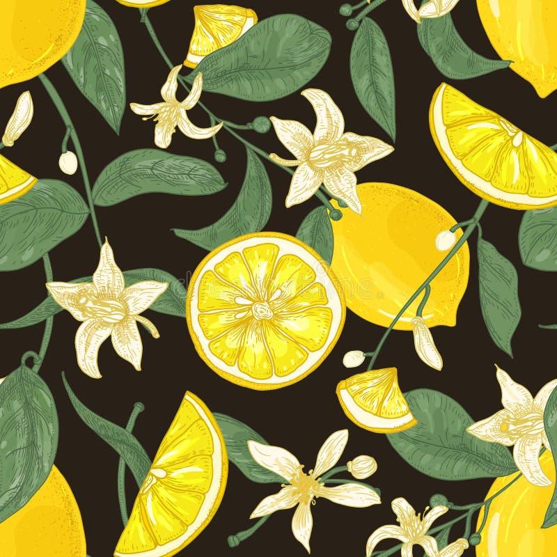 Teste padrão sem emenda botânico com limões, todo e corte em partes, ramos com flores e folhas no fundo preto ilustração royalty free
