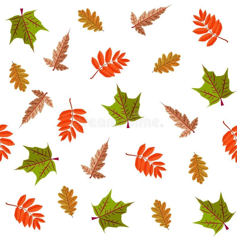 Teste padrão sem emenda botânico decorativo colorido com folhas fotos de stock