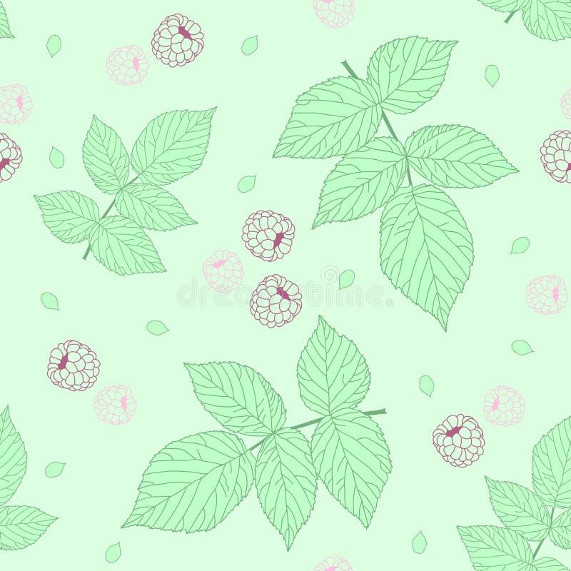 Teste padrão sem emenda claro com framboesas e as folhas verdes da framboesa ilustração stock