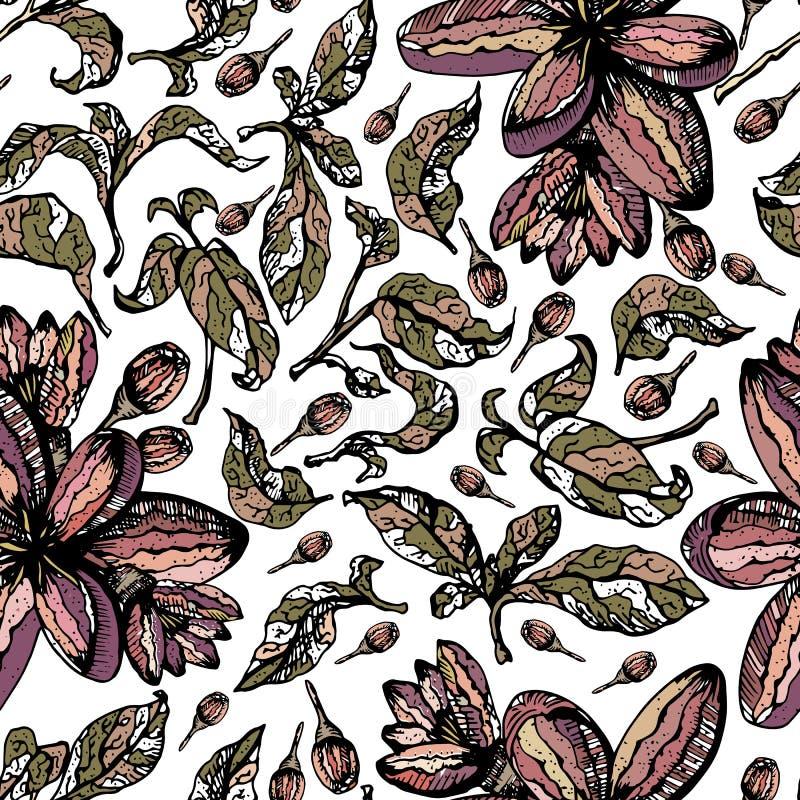 Teste padrão sem emenda colorido com folhas, botões, flores e fundo branco ilustração stock