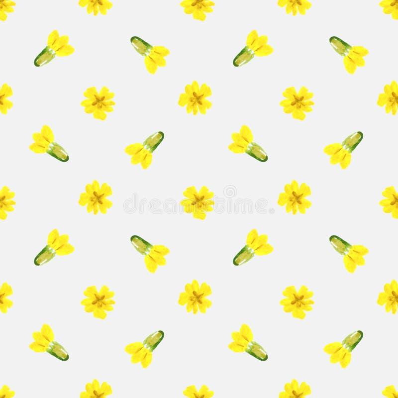 Teste padrão sem emenda com as flores da prímula da mola da aquarela imagens de stock royalty free