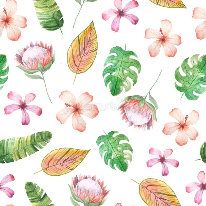 Teste padrão sem emenda com as flores tropicais da aquarela ilustração stock