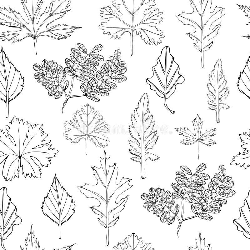 Teste padrão sem emenda com as folhas monocromáticas das árvores e das flores Entregue o esbo?o tirado da tinta isolado no fundo  ilustração stock