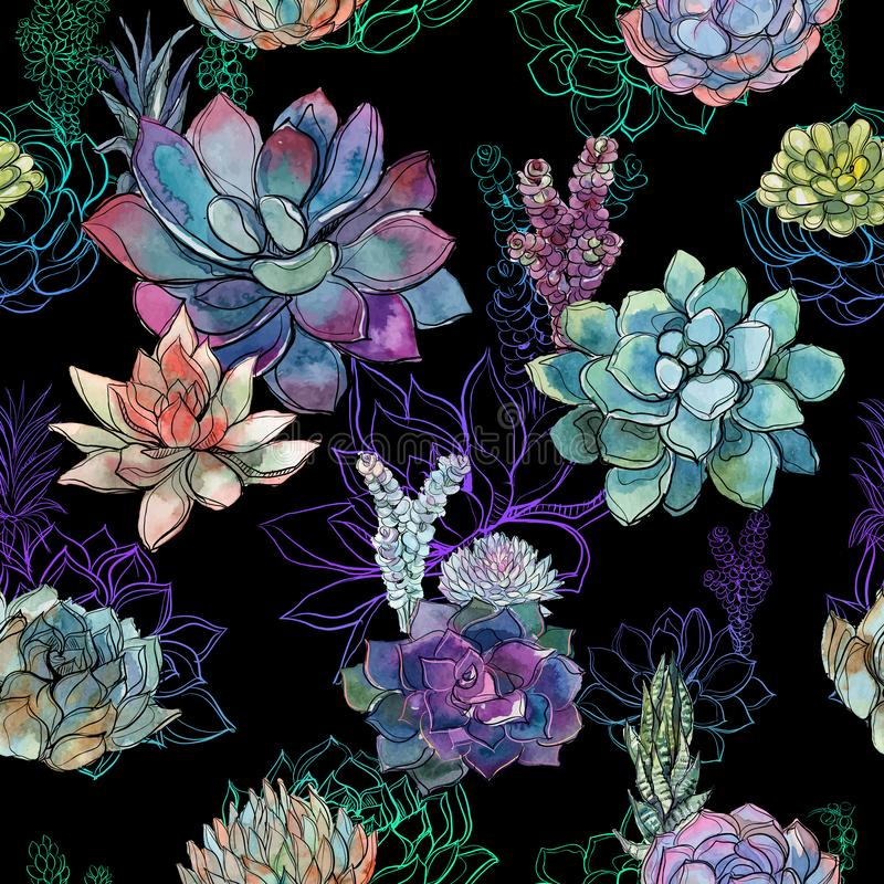 Teste padrão sem emenda com as plantas carnudas no fundo preto gráficos watercolor ilustração do vetor
