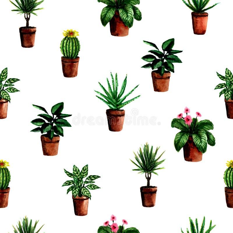 Teste padrão sem emenda com as plantas verdes da casa pintado à mão da aquarela em uns potenciômetros para a matéria têxtil ilustração royalty free