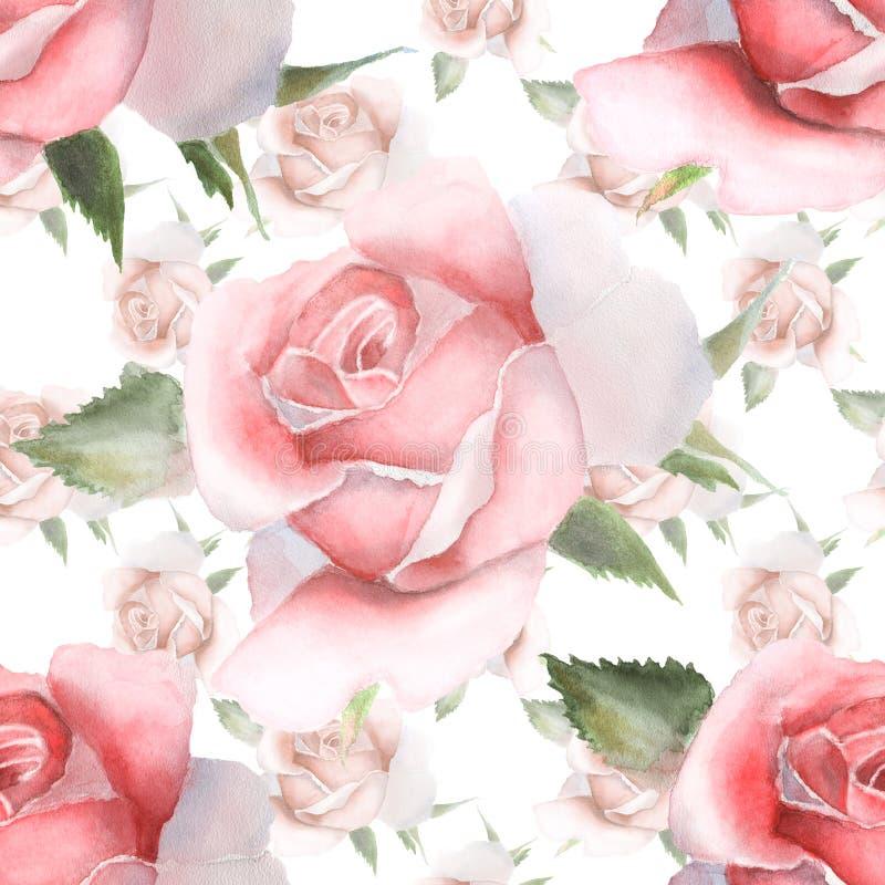Teste padrão sem emenda com as rosas cor-de-rosa da aquarela ilustração stock