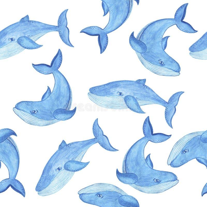 Teste padrão sem emenda com baleia azul, estilo da aquarela dos desenhos animados ilustração do vetor