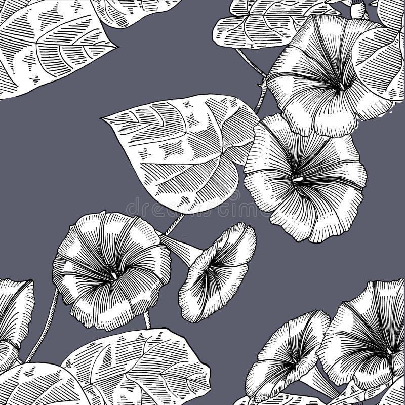 Teste padrão sem emenda com corriola Mão desenhada gráficos ilustração stock