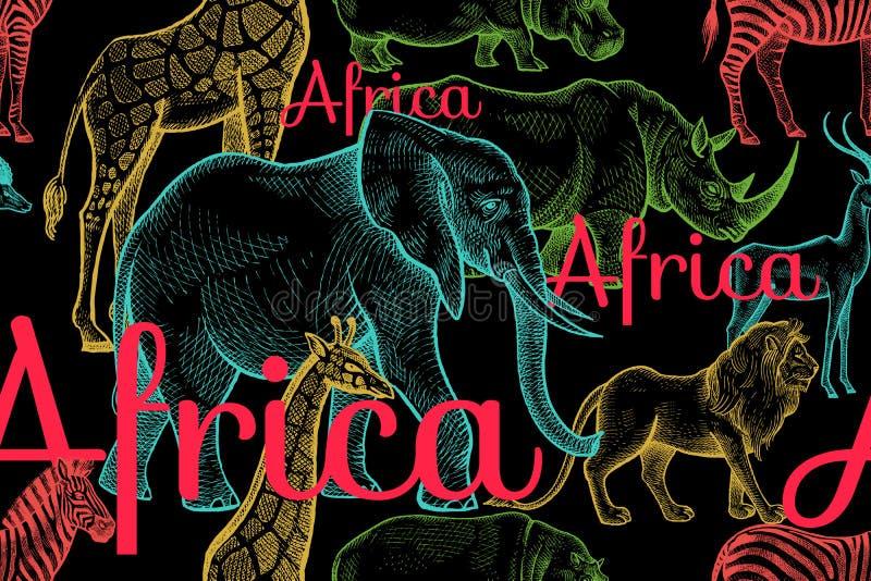 Teste padrão sem emenda com elefantes, girafas, rinocerontes, hipopótamos, leões ilustração do vetor