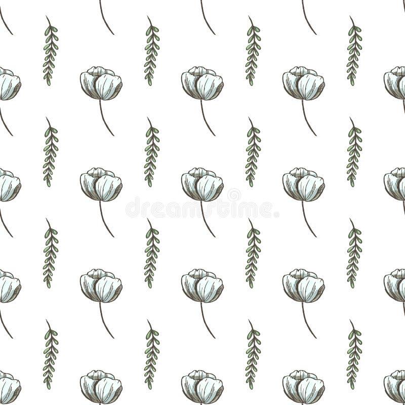 Teste padrão sem emenda com elementos tirados mão da planta Teste padrão bonito da natureza para a tela, roupa do bebê, fundo, ma ilustração do vetor