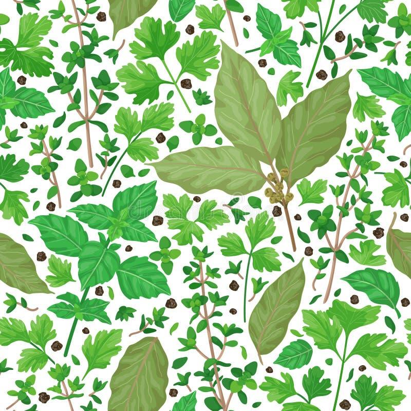 Teste padrão sem emenda com ervas ilustração royalty free