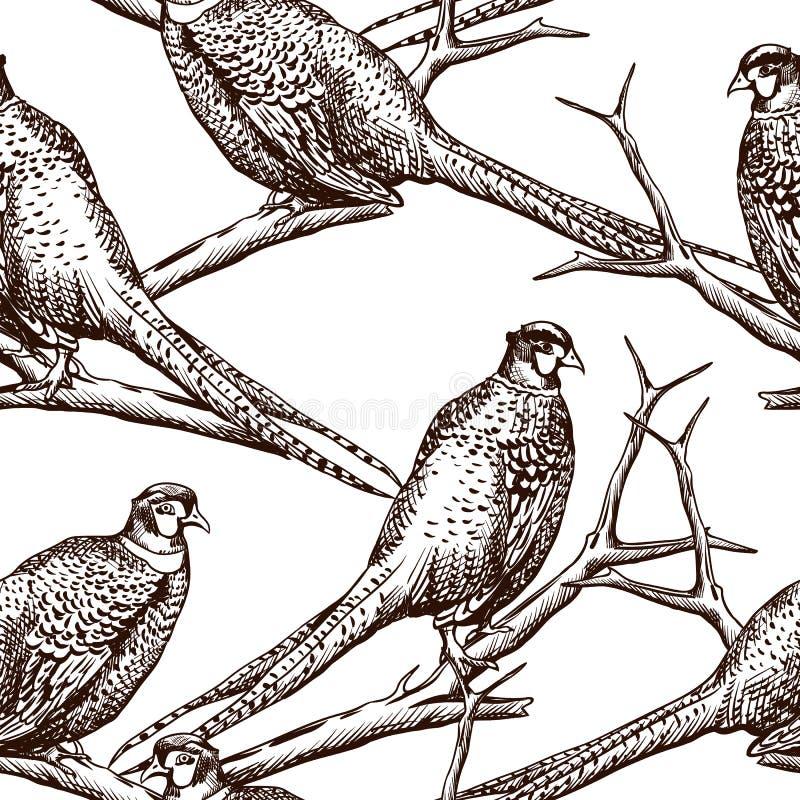 Teste padrão sem emenda com faisão ilustração royalty free
