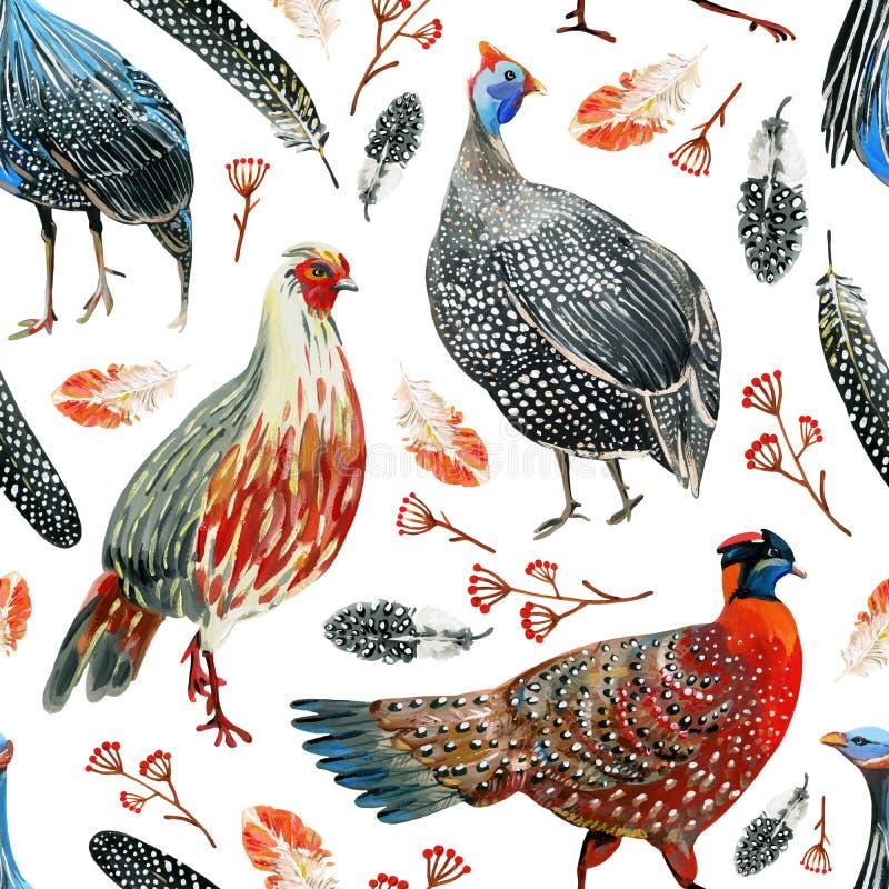 Teste padrão sem emenda com faisão desenhados à mão, guineafowls, penas e ramos com bagas ilustração stock