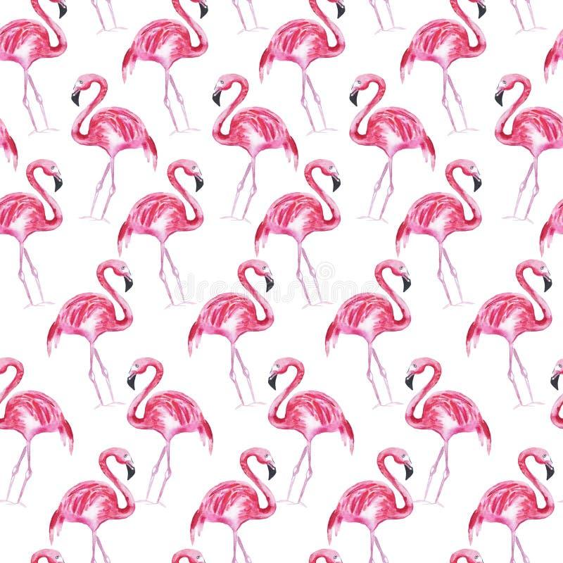 Teste padr?o sem emenda com flamingo cor-de-rosa em um fundo branco Ilustra??o da aguarela ilustração stock