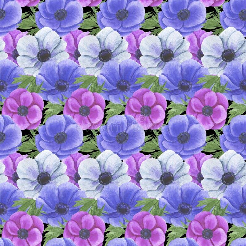 Teste padrão sem emenda com flores Anemone Illustration da aquarela da matéria têxtil de papel feito a mão de Digitas das textura ilustração royalty free