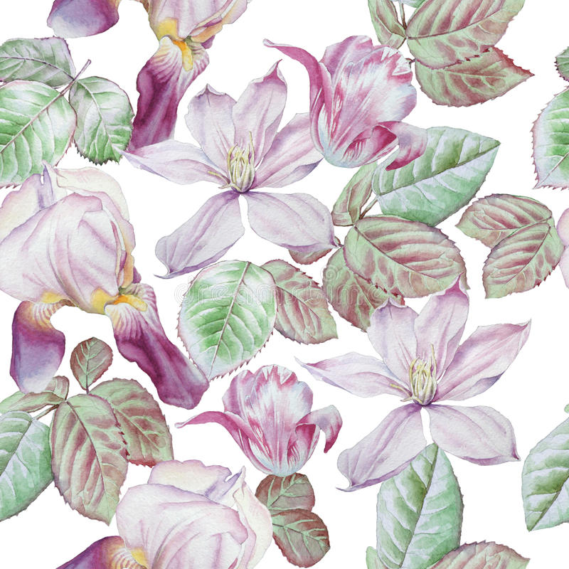 Teste padrão sem emenda com flores da mola Clematis Tulipa íris watercolor ilustração stock