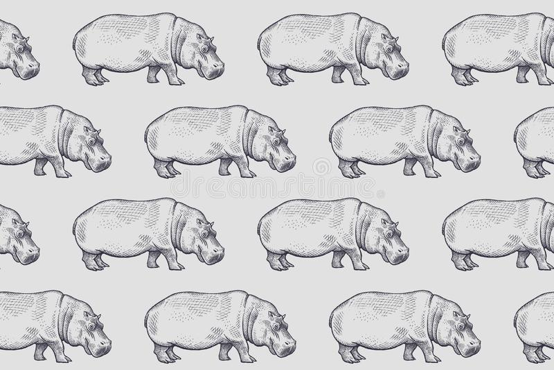 Teste padr?o sem emenda com hipop?tamo africano ilustração royalty free