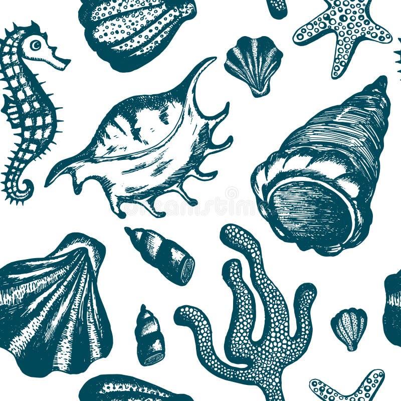Teste padrão sem emenda com mão azul as conchas do mar tiradas Fundo marinho Vector a textura com conchas do mar, coral do vintag ilustração do vetor