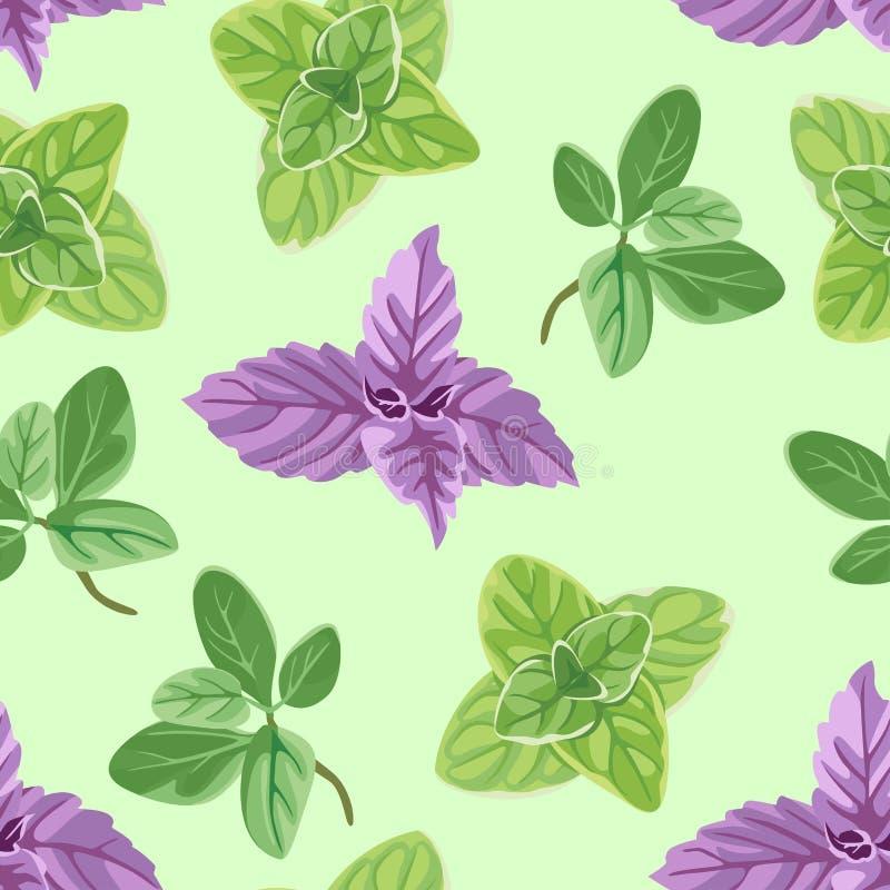 Teste padrão sem emenda com oréganos, manjericão e manjerona em um fundo verde ilustração stock