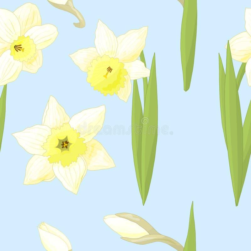 Teste padrão sem emenda com os narcisos amarelos no fundo azul ilustração royalty free