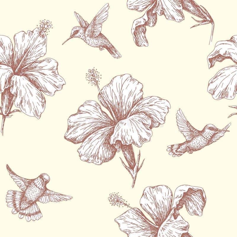Teste padrão sem emenda com os pássaros e o hibiscus do zumbido do voo ilustração do vetor