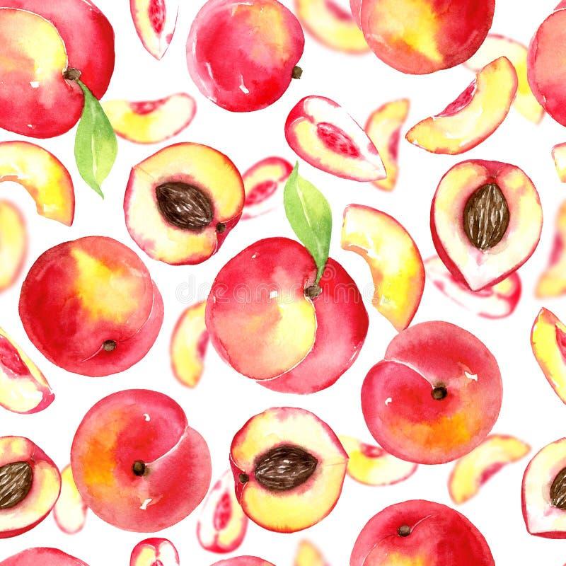 Teste padrão sem emenda com os pêssegos pintados à mão da aquarela ilustração stock