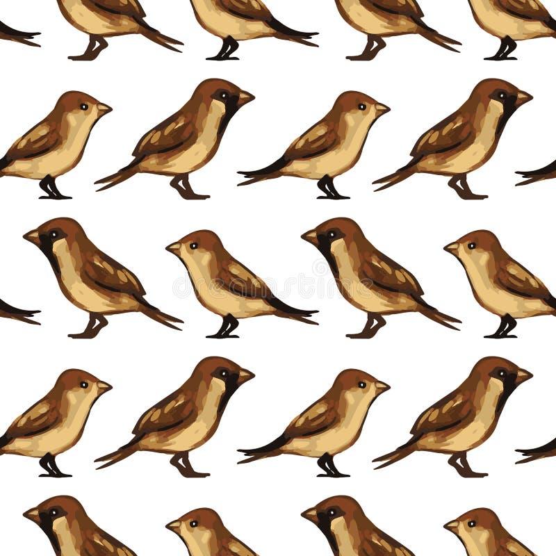 Teste padrão sem emenda com pardais dos pássaros ilustração stock