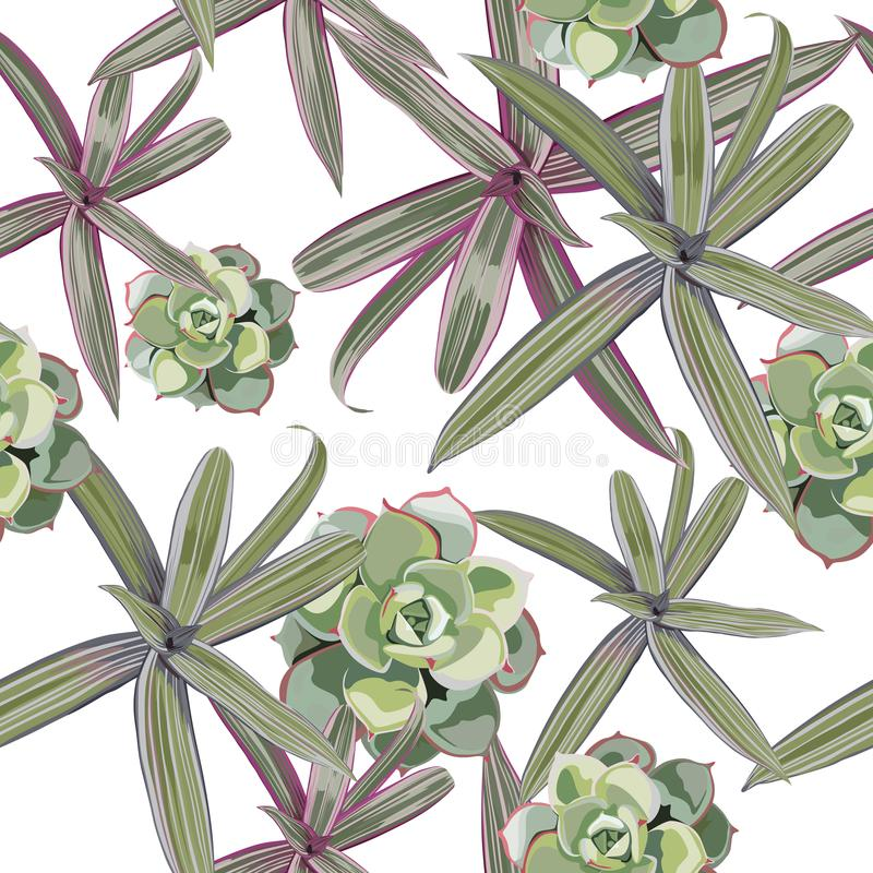 Teste padrão sem emenda com plantas tropicais Folhas do rosa e as violetas e planta carnuda verdes no fundo branco ilustração royalty free