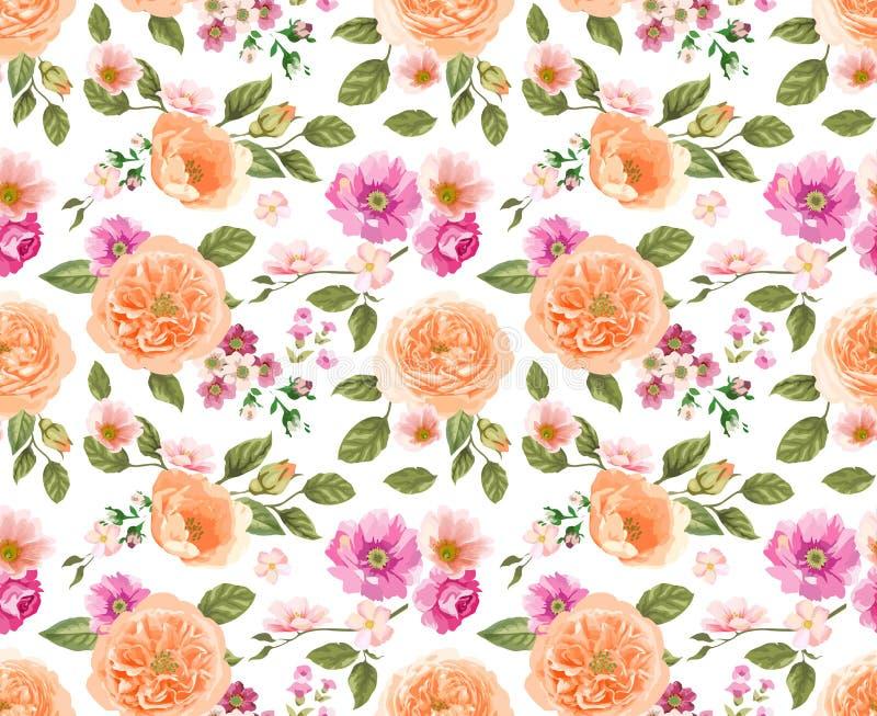 Teste padrão sem emenda com rosas Fundo floral composição do projeto ilustração royalty free