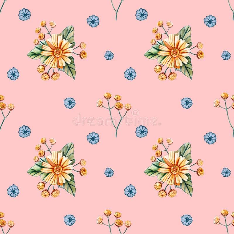 Teste padrão sem emenda com wildflowers da aquarela em um fundo alaranjado Teste padrão pastel delicado com margaridas amarelas ilustração royalty free