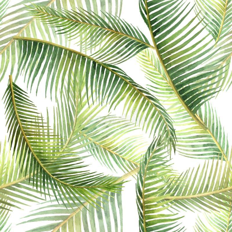 Teste padrão sem emenda da aquarela com as folhas tropicais no fundo branco ilustração stock