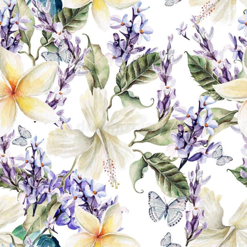 Teste padrão sem emenda da aquarela com flores e alfazema do hibiscus ilustração do vetor