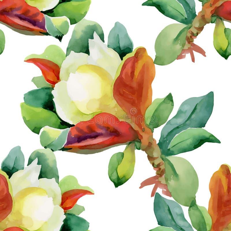 Teste padrão sem emenda da aquarela com flores e as folhas coloridas no fundo branco, teste padrão floral da aquarela, flores den ilustração do vetor