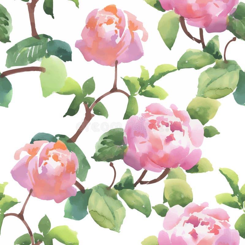 Teste padrão sem emenda da aquarela com flores e as folhas coloridas no fundo branco, teste padrão floral da aquarela, flores den ilustração royalty free